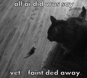 all ai did wus say    vet.   faint ded away.