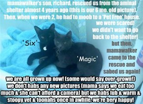 Our 'Twice-Rescued' Story!