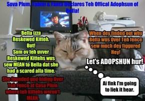 Adopshund Bai Sova Plum 4