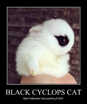 BLACK CYCLOPS CAT
