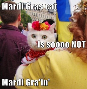 Mardi Gras cat is soooo NOT Mardi Gra'in'