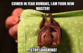 COWER IN FEAR HUMANS, I AM YOUR NEW MASTER!