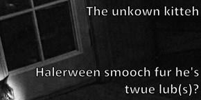 The unkown kitteh  Halerween smooch fur he's twue lub(s)?