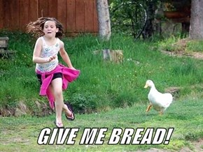 GIVE ME BREAD!