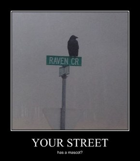 Edgar Allen Poe Lives Here