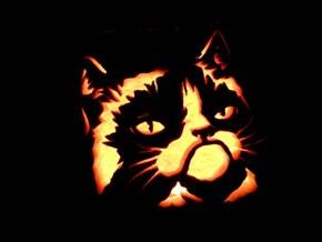 I Was a Pumpkin Once... I HATED IT!
