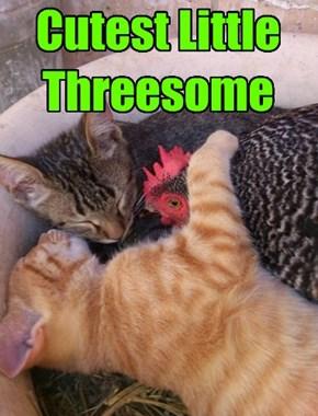 Er, I mean trio.