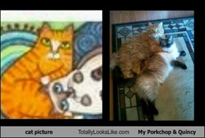 cat picture Totally Looks Like My Porkchop & Quincy