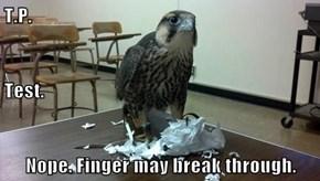 T.P.  Test.  Nope. Finger may break through.