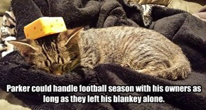 Parker could handle football season with his owners as long as they left his blankey alone.
