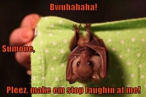 Bwuhahaha! Sumone, Pleez, make em stop laughin at me!