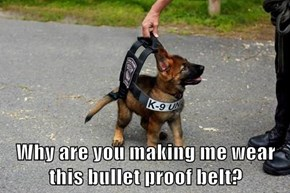 Why are you making me wear this bullet proof belt?