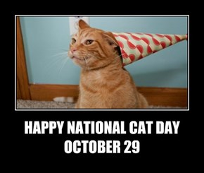 HAPPY NATIONAL CAT DAY OCTOBER 29