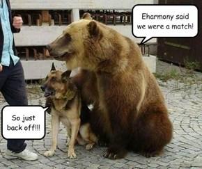 Eharmony said we were a match!