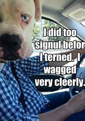 I did too signul befor I terned.  I wagged very cleerly.