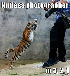 Nutless photographer  in 3, 2, 1