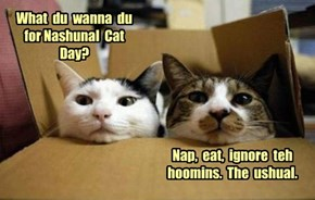 What  du  wanna  du for Nashunal  Cat  Day?