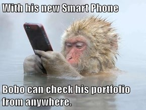 With his new Smart Phone  Bobo can check his portfolio from anywhere.