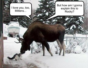 I love you, too, Mittens...