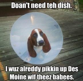 Doan't need teh dish.