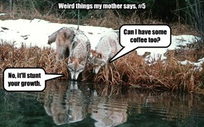 Weird things my mother says, #5