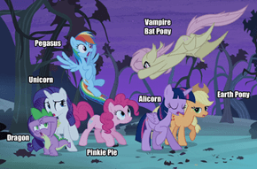 The Mane Six - All Pony Types (and a Dragon)