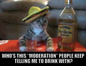 Moderation Must be a Good Guy