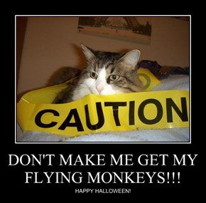 DON'T MAKE ME GET MY FLYING MONKEYS!!!