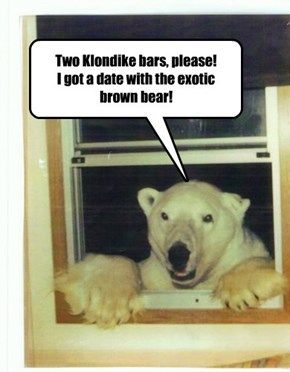 Two Klondike bars, please! I got a date with the exotic brown bear!