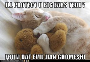 ILL PROTECT U BIG EARS TEDDY  FRUM DAT EVIL JIAN GHOMESHI