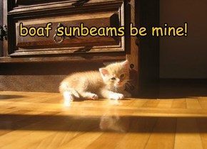 Step away frum da sunbeams!