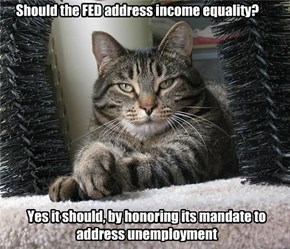 You has questions Econ Cat has answers