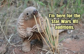 I'm Interested in Tatooine Especially