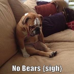 No Bears {sigh}