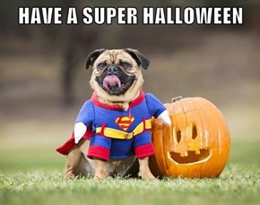 HAVE A SUPER HALLOWEEN