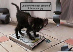 Un unknown error occurred. It is very angry.