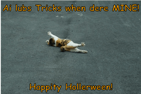 Ai lubs Tricks when dere MINE!   Happity Hollerween!