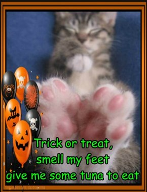 Trick or treat,  smell my feet give me some tuna to eat