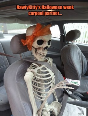 NawtyKitty's Halloween week carpool partner...