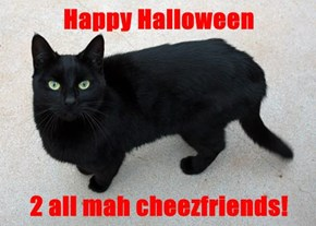 Happy Halloween  2 all mah cheezfriends!