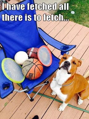 I have fetched all there is to fetch...