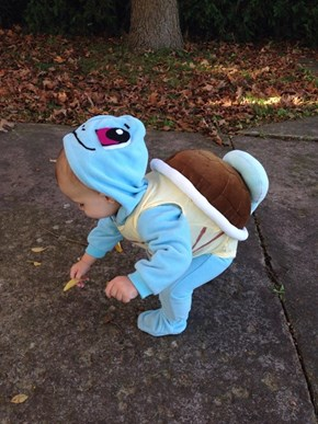 Baby Squirtle Spotted!