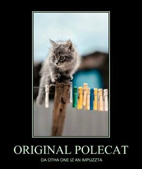 ORIGINAL POLECAT