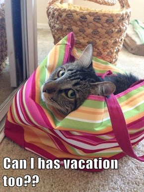 Can I has vacation too??