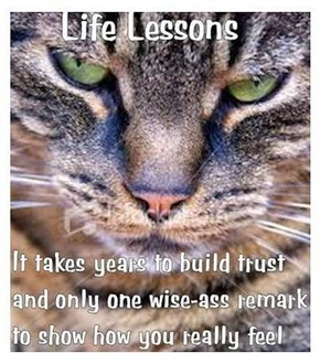 NCcharmer.com  Life Lessons