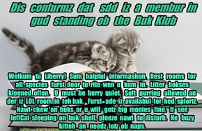 Offishul JeffCatsBookClub Memburship Kard for sdd!
