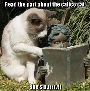 Read the part about the calico cat.  She's purrty!!