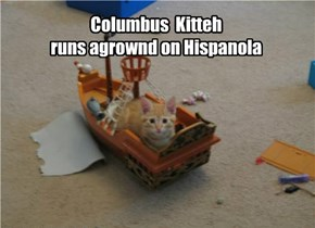 Columbus  Kitteh   runs agrownd on Hispanola