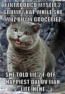 I INTRODUCD MYSELF 2 GRUMPY KAT WHILE SHE WUZ BUYIN GROCERIEZ  SHE TOLD ME 2 F-OFF ... HAPPIEST DAI OV MAH LIFE, HEHE