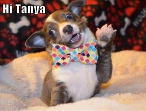 Hi Tanya